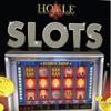 Hoyle Slots (2010)